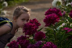 Small nice girl with beautiful eyes smelling peony flowers in park stock photography