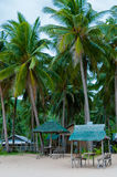 Small Nipa bamboo huts On the Beach under palm stock photography