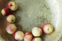 Small northern apples Royalty Free Stock Photos