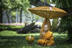 A small novice is meditating under the tree. BANGKOK, THAILAND – APRIL 8: A small summer novice who is meditating on the outdoor with green nature royalty free stock photography