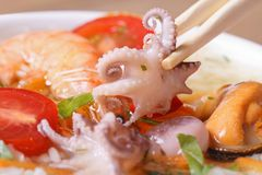 Small an octopus hold chopsticks macro Royalty Free Stock Images