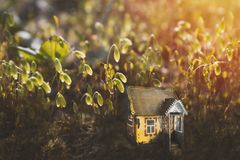 Small old magic fairy or elf house in moss in the forest. Sunshine in the evening. Fabulous magic glade in the fairy tale forest. royalty free stock images