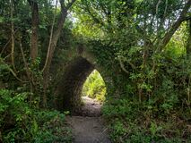 Free Small Old Stone Arched Bridge, Hidden In Nature Undergrowth And Weeds. Gateway Hidden In Green. Royalty Free Stock Photography - 184994527