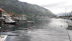a small old town on the sea in Kotor stock images