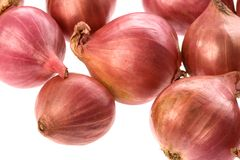 Small Onions Isolated Stock Photos