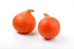 Small orange pumpkins Royalty Free Stock Image