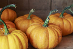 Small Orange Pumpkins in a wooden crate royalty free stock photography