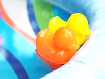 Small orange and yellow plastic duck toys floating on water Stock Images