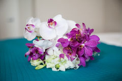 Small Orchid Bouquet Stock Photography