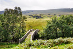 Small Packhorse Bridge in a Moorland Setting. A small packhorse bridge in a moorland setting flanked by trees Stock Photography