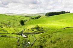 Small packhorse bridge ove a stream in Smardale. A small packhorse bridge ove a stream in Smardale, Cumbria set amongst green fields grazed by sheep Stock Photo