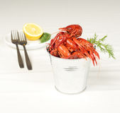 Small pail with river lobsters Stock Image
