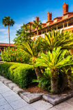 Small palm trees and building at Flagler College, in St. Augusti Royalty Free Stock Image