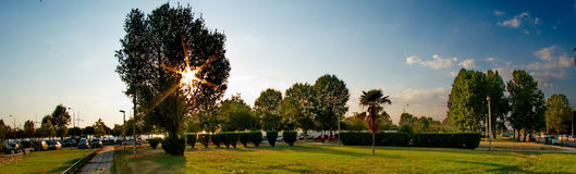 Small park in the city. A picture of a small park of green trees and small bushes,in a greek town Thessaloniki,in a summer day of july Royalty Free Stock Images