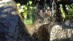 Small Park Waterfall Over Rocks stock video footage