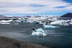 Small parts of melting iceberg in river. Ice drifting in Iceland. Global warming, Greenhouse effect.  Royalty Free Stock Photography