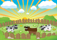 Small pasture Royalty Free Stock Image