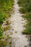 Small path Royalty Free Stock Image