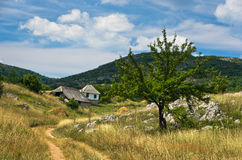 Small path through Pester countryside landscape Royalty Free Stock Photos