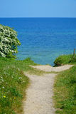 Small path to the coast Stock Photography