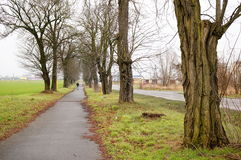 Small path Royalty Free Stock Photos