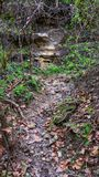 Small path worn from running water, leading to rock face in side of hill showing yellow rock exposed by weathering royalty free stock photography