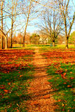 Small pathway in the autumn Royalty Free Stock Photo