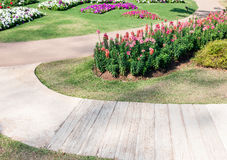 Small pathway Royalty Free Stock Image
