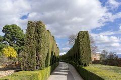 Pathway among hedge. A small pathway among hedge in Alhambra palace garden in Granada, Spain Royalty Free Stock Photo