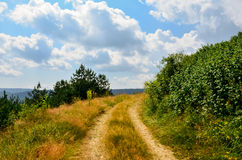 Small pathway in the nature Stock Image