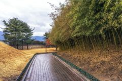 Royal mounds in daereungwon. A small pathway among the royal mounds with bamboo groves in daereungwon, gyeongju, south korea Royalty Free Stock Images