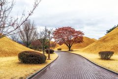 Royal mounds in daereungwon. A small pathway among the royal mounds in daereungwon, gyeongju, south korea Royalty Free Stock Image