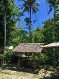 Small pavilion in the Philippine jungle made of bamboo surrounded by palm trees, Mindoro, Philippines stock photography
