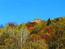 The small peak in the middle of the Woods Stock Photography