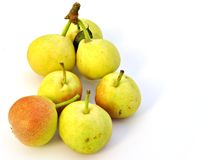 Small pears Royalty Free Stock Image