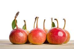 Small pears Royalty Free Stock Photography