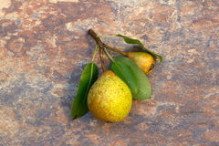 Small Pears Stock Photos