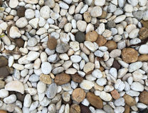 Small pebble rock background texture Stock Images