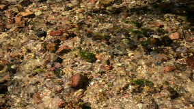 Small pebble stones closeup underwater of flow river stream. Beautifully sunlight stock footage