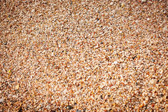 Small pebbles background. warm shades Royalty Free Stock Photo