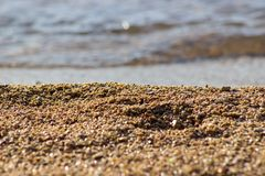 Small pebbles on the beach Royalty Free Stock Photo