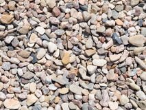 Small pebbles texture Stock Image