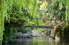 Small pedestrian bridge behind the green foliage of trees, bushes, and rocks over a creek / stream in Beacon Hill Park Victoria. Behind Tree branches in the Royalty Free Stock Photo