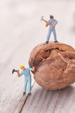Small people split the walnut. The concept of cooking Stock Images