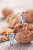 Small people split the walnut. The concept of cooking Royalty Free Stock Images