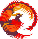 Small Phoenix Bird Royalty Free Stock Images