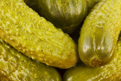 Small pickles Stock Images