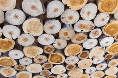 Small piece of wood logs used for design decorated interior Royalty Free Stock Photos