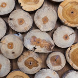Small piece of wood logs used for design decorated interior Royalty Free Stock Images