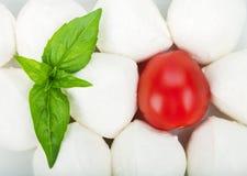 Small pieces of mozzarella, cherry tomato and basil Royalty Free Stock Photos